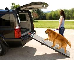 Dog Bed For Truck Korrectkritterscom Folding Alinum Dog Ramps Youtube How To Build A Dog Ramp Dirt Roads And Dogs Discount Lucky 6 Ft Telescoping Ramp Rakutencom Load Your Onto Trump With For Truck N Treats Using Dogsup Pet Step For Pickup Best Pickup Allinone Pet Steps And Nearly New In Box Horfield Land Rover Accsories Dogs Uk Car Lease Pcp Pch Deals Steps Fniture The Home Depot New Bravasdogs Blog Car Release Date 2019 20