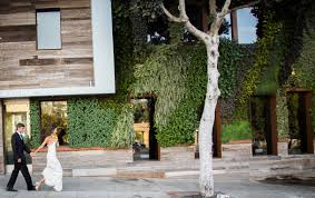 100 Hotel Seven 4 One One Laguna Beach California United States