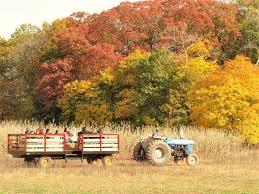 Pumpkin Picking South Nj by Fall Festival U2013 Snyders Farm