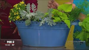Indoor container demonstration with Natures Garden Center Story
