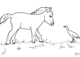 Mare And Foal Coloring Pages Grazing American Quarter Horse Page Free Printable Adult Beautiful Kids 1152