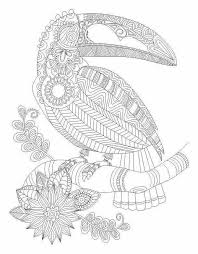 Toucan Bird Abstract Doodle Zentangle Coloring Pages