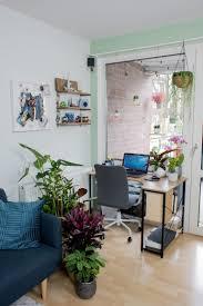 pflanzen makeover wohnzimmer homeoffice 1000 gute gründe