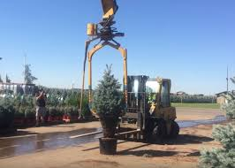 Christmas Tree Baler Netting by Watching This Tree Baler Wrap An Evergreen Tree Is Fascinating