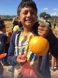 Pumpkin Patch Animal Farm In Moorpark California by Underwoodfamilyfarms Underwoodfarms Twitter