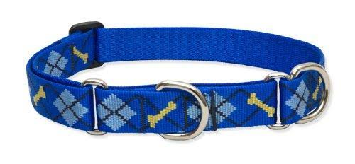 Lupine Martingale Combo Dog Collar - Dapper Dog, 1 x 15-22 in