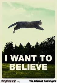 I Want To Believe Funny Cat Poster