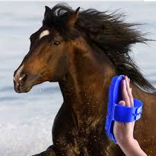 Horse Hair Shedding Tool by Popular Horse Bristle Brush Buy Cheap Horse Bristle Brush Lots