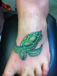 Greenish Blue Turtle On Foot