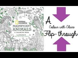 National Geographic Magnificent Animals Colouring Book Flipthrough