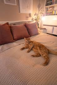 schlafzimmer update so habe ich meinen schlafbereich