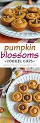 Muirhead Pecan Pumpkin Butter Dessert Squares by 759 Best Seasons Autumn Images On Pinterest Fall Recipes
