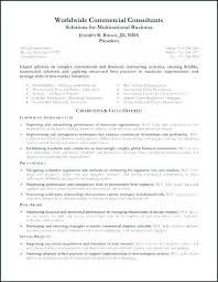 Professional Summary On Resume Unique Sample With Functional Examples