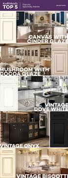 100 schuler cabinets vs kraftmaid industrial kitchen faucet