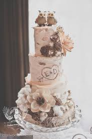 I Love This Little Owl Cake Topper It Goes So Well With The Bark Rustic Wedding