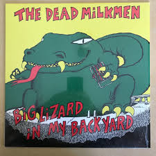 Dead Milkmen - Big Lizard In My Backyard (Used LP) - GREEN VINYL ... Roadsendnaturalist Roads End Naturalist Raptormaniacs San Diego Zoo Part I Reptile Mesa Lovely Plantings My Adventures In Gardening Big White Throat Monitor Lizard Reptilians Do It Best 1985 Best Amazing Lizards Images On Pinterest Chameleons Lorde Archives The Key Digital Wallpaper Beautiful Ldon V House Pet Updates Chris And Ash Discussions Of Exotic Species Music Concerts Life Dead Milkmen Laurel Hill July 2010