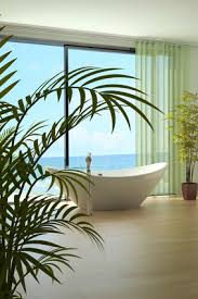 grünpflanzen fürs badezimmer badezimmer pflanzen tipps