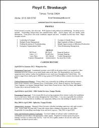 Professional Teacher Resume Template Download Executive Free