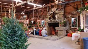 Christmas Trees | Heritagefarms Weekend Getaway Guide Wooster And Wayne County Ohio Girl Pottery Barns Holiday Dcor Driven By Decor 101_0639jpg The Pine Tree Barn Flushing Mi Image Mag Barred Owl On Top Of A Pine Tree Wallpaper Animal Wallpapers Ol Dairy Christmas Farm Trees Old In Sunnyside Georgia 20 Small Towns You Should Be Spending Time This Fall Jones Family Best Images On Find The Perfect At Evans Whispering Pines Faux Lit Basket Au Willamsburg Festival Shreve Been There