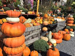 Pumpkin Patch Harrisonburg Va by October 2017 20 Things To Do In And Around Staunton Va Bearing