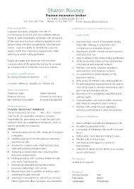 Personal Profile Resume Skills Examples On Example This Is