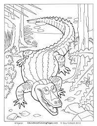 Printable Animals Coloring Pages Animal For Kids Alligator Page