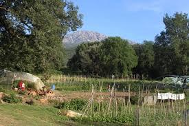 Chambres D Agriculture Corse Corse Corse Les Surfaces Peu Productives Ne Pourraient Plus être Primées