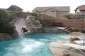 Dog Loves Slide. [VIDEO] Bedroom Pleasing Awesome Backyard Pool Slide Gopro Hero Best Designs Pics With Extraordinary Small Pools The Famifriendly Slide Becomes An Adventure As It Wraps Around Backyards Chic Design Ipirations Swimming Waterslides Walmartcom Appealing Water Slides Features Omni Builders Interior With Rock Pinterest Rock And Hot Tub And Vinyl Liner Diving Board 50 Ideas
