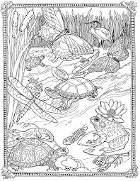 518 Best Coloring Pages For Adults Images On Pinterest