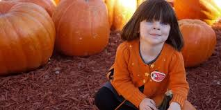 Noblesville Pumpkin Patch by 30 Perfect Pumpkin Patches In Indiana You Need To Know About