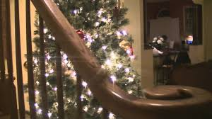 Sears Pre Lit Christmas Trees Instructions by Ty Pennington Cashmere Charleston Pine Christmas Tree Youtube