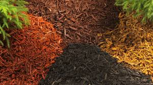 10 Types of Garden Mulch Choose the Right e for Your Landscape
