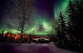 Where Can You See The Northern Lights Fairbanks Moose Manor Bed