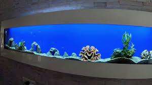 wand aquarium edelstahl mit led beleuchtung neu showroom an der deutsche grenze wilkommen