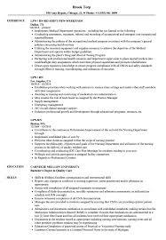 Lpn Rn Resume Samples
