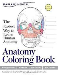 Stylist Design Physiology Coloring Book Amazon The 2nd Edition