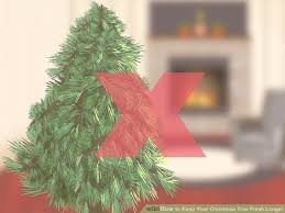 Sugar Or Aspirin For Christmas Tree by How To Keep Your Christmas Tree Fresh Longer 13 Steps