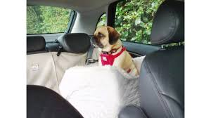 shop online snoozer lookout dog car seat snoozer pet beds youtube