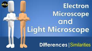 Electron Microscope Vs Light Microscope Differences Electron
