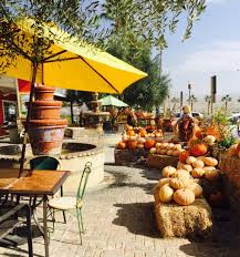 Pumpkin Patch Sf Yelp by Murray Family Farms 343 Photos U0026 166 Reviews Farmers Market