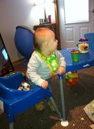 Evenflo High Chair Table Combo by Evenflo Mini Meal 3 In 1 High Chair Dottie Royal Walmart Com