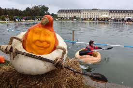 Heaviest Pumpkin Ever by Picture The Big Weird Picture Abc News