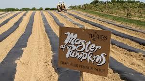 Troegs Master Of Pumpkins by 9 Pumpkin Beers Made With Fresh Pumpkin Yes Real Pumpkins