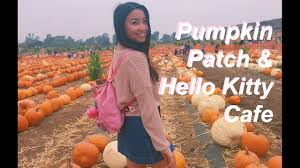 Irvine Pumpkin Patch Tanaka by Pumpkins And Hello Kitty Daytrippin U0027 Mini Vlog Youtube