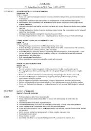 Download Inside Sales Coordinator Resume Sample As Image File