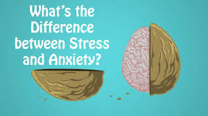 Difference Between Stress And Anxiety Not On The High Street Voucher Code August 2019 Rsvp Promo Derm Store Coupons Cheap Tickers Com Este Lauder Sues Deciem After Founder Shuts Down Stores Wsj The Ordinary How To Create A Skincare Routine Detail Ultimate List Of Korean Beauty Black Friday Sales 1800 Contacts Coupon 2018 Google Adwords Deciem 344 Apgujeongro 12gil Gangnamgu 1st Vanity Cask January 600 Free Product Thalgo Pack Worth 3910 Coupon Code Unboxing Review Fgrances Promo Codes Vouchers December Vitamin C Serum 101 Timeless 20 Ceferulic Acid Surreal Succulents 15 Off 20