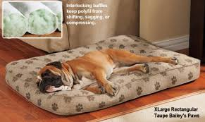 Classic Dog Bed Drs Foster and Smith Ultimate Classic with