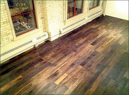Petexcellent Pros And Cons Of Luxury Vinyl Plank Flooring Type 122 Witzkeberry Within Popular