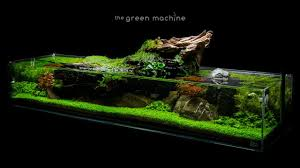 Aquascape Tutorial: Simplicity By James Findley - How To Create A ... Awesome Aquascaping Gallery Iiac European Aquascape Channel Aquascapes Homedesignpicturewin Aquascaping Tutorial Aqurios Para Decorao Pinterest Big Tutorial Guide Continuity By James Findley The Indonesia Green Machine Ada Aquarium Acuarios Aquariums Best Of Aquascapes Fabuluxedecor Natural Iwagumi Scottish Grass Size 40x25h Lab Undergrowth Wood Tank 130l Aquadesign