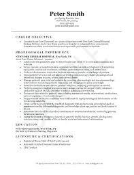 Sample Icu Nurse Resume Cardiac